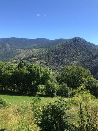 Imatge d'una prada al pirineu, al fons es veu una vall i una carena muntanyosa