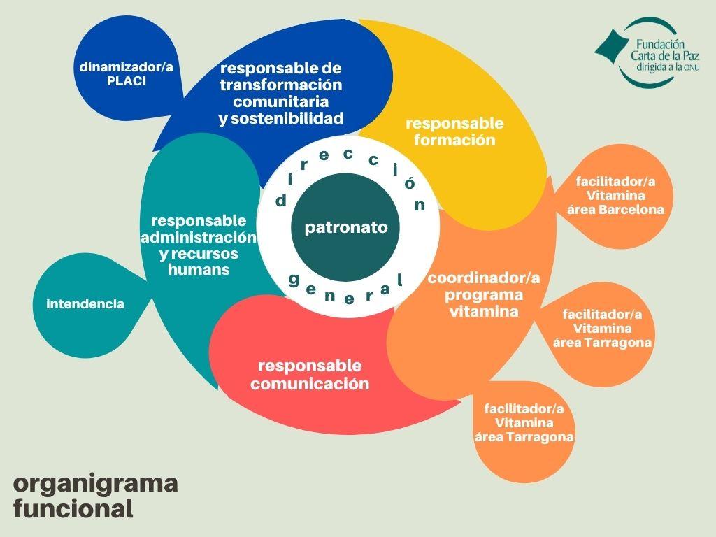 infografía del organigrama funcional de la fundación carta de la paz
